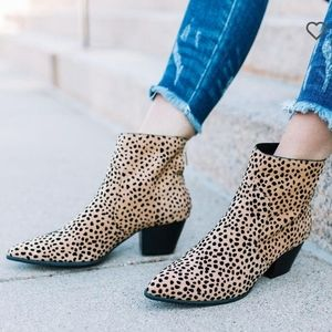 Cute boutique animal print booties from buckle.